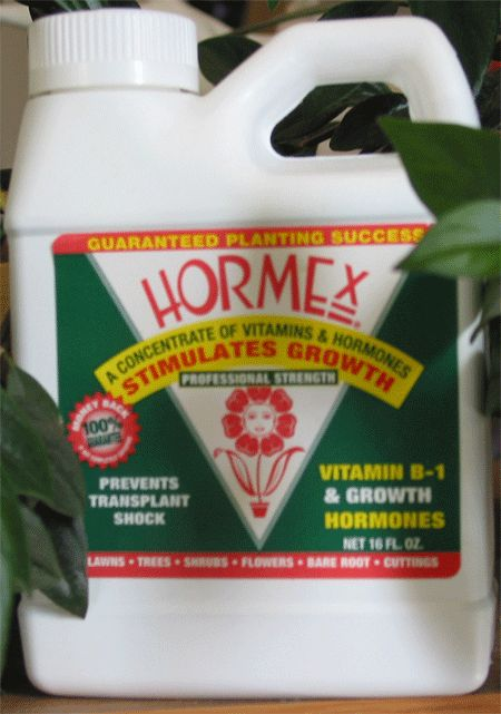 Hormex Liquid, 16oz